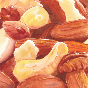 Spicy Nuts illustration - Helen Lock