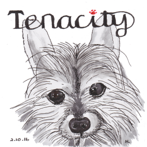 Tenacity - #Inktober2016